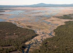 Aerial view of Sycan Marsh.