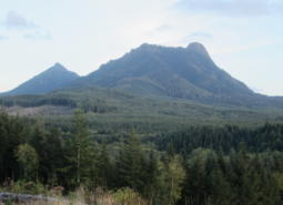Saddle Mountain in Oregon's Coast Range ecoregion.