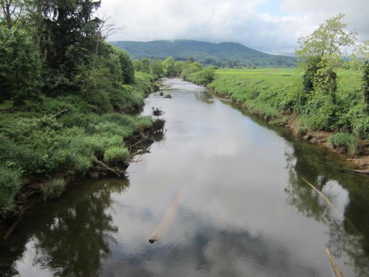 The North Fork Nehalem River in Oregon's Coast Range.