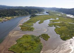 The Siuslaw River Estuary in Oregon's Coast Range ecoregion.