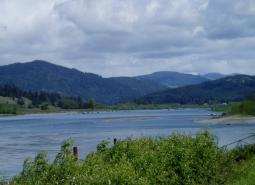 a wide river flows through a forested landscape on an overcast day.