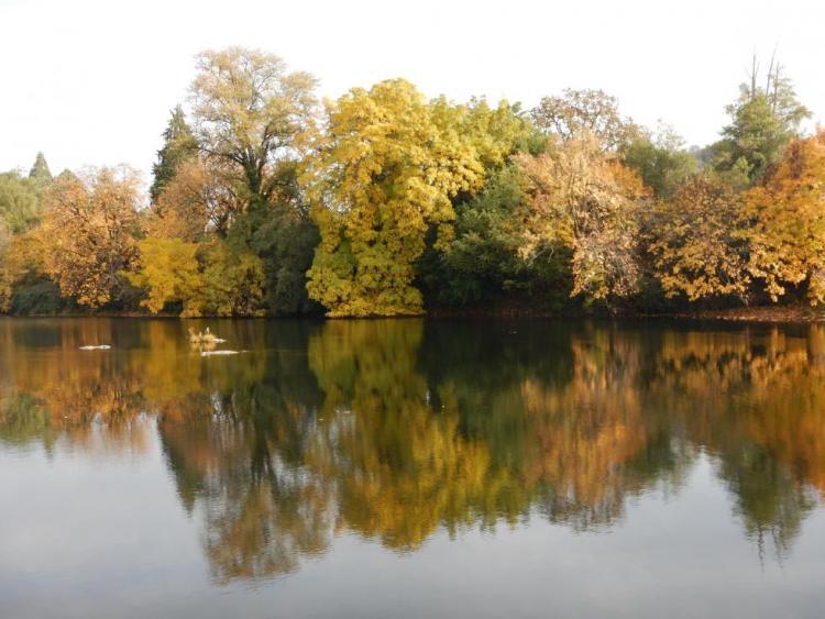South Fork Umpqua River