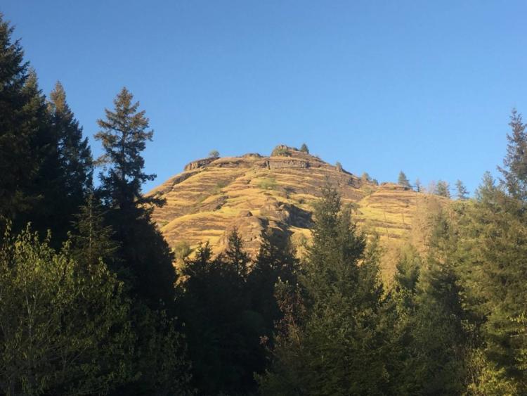 Reston Ridge in the Klamath Mountains ecoregion.