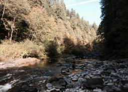 Little North Santiam River