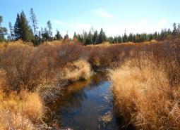 Little Deschutes River