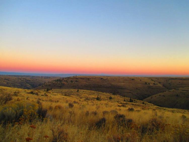 COA_151_Bakeoven Creek Buckhollow Creek_Shilah Olson_Wasco County SWCD