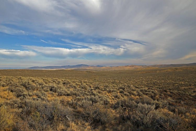 Powder River Sage-Grouse Core Area with Lookout Mountain in the background.