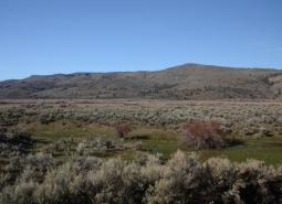 COA_183_Bully Creek Area_Philip Milburn_ODFW