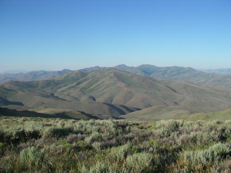COA_204_Trout Creek Mountains_Rodney Klus_ODFW