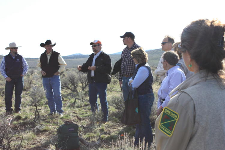 Challenges and Opportunities for Private Landowners to Initiate Conservation Actions
