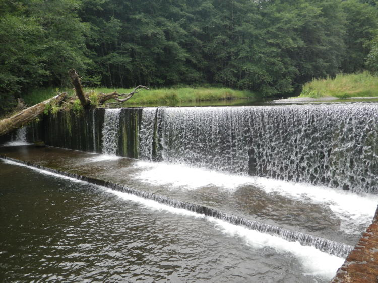 The East Fork South Fork Trask River dam is the highest priority fish passage barrier on the North Coast on the ODFW Passage Priority List. The dam is scheduled for removal in 2016.