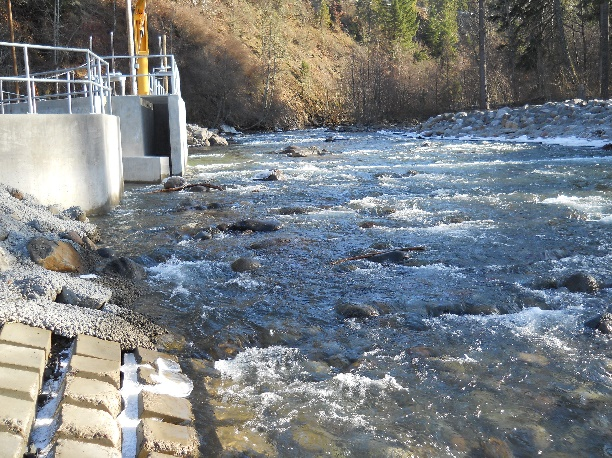 February 2014. The entrance to the fish ladder is on the left. The Obermeyer weir is lowered during the winter, making the river freely passable to fish.