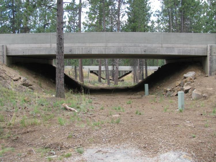 Wildlife Passage Structure, Highway 97, Central Oregon