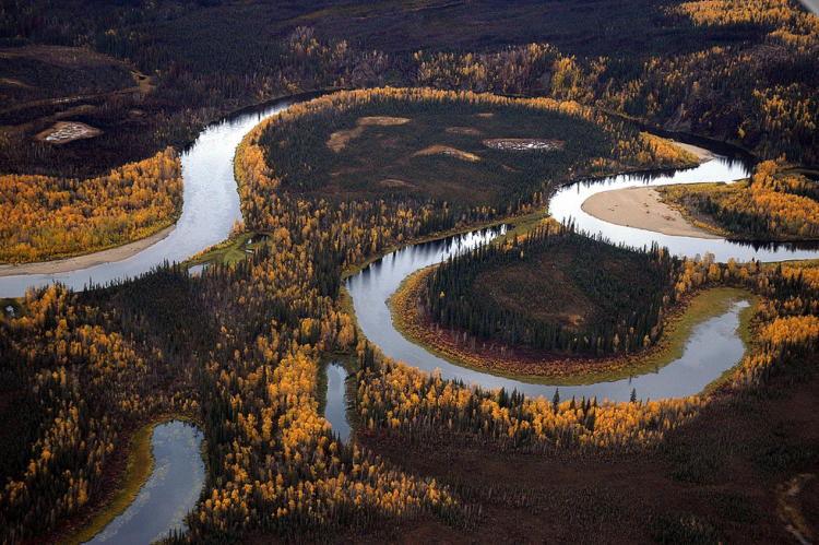 Oxbows provide critical habitat for fish and wildlife.